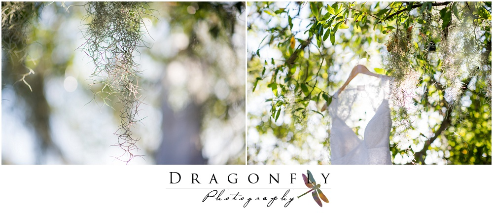 Dragonfly Photography Rustic South Florida Beach Weddingphotos_0072