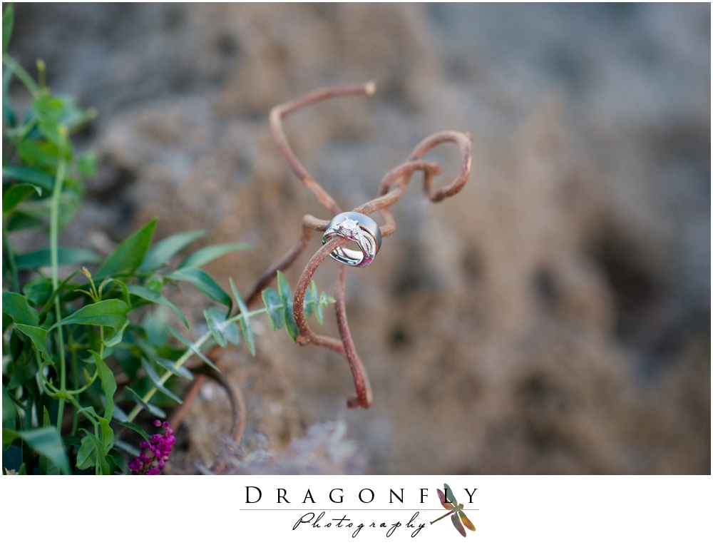 Dragonfly Photography Rustic South Florida Beach Weddingphotos_0101