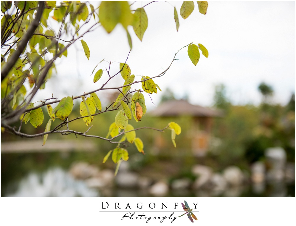 Dragonfly Photography lifestyle wedding and portrait photography photo_0045