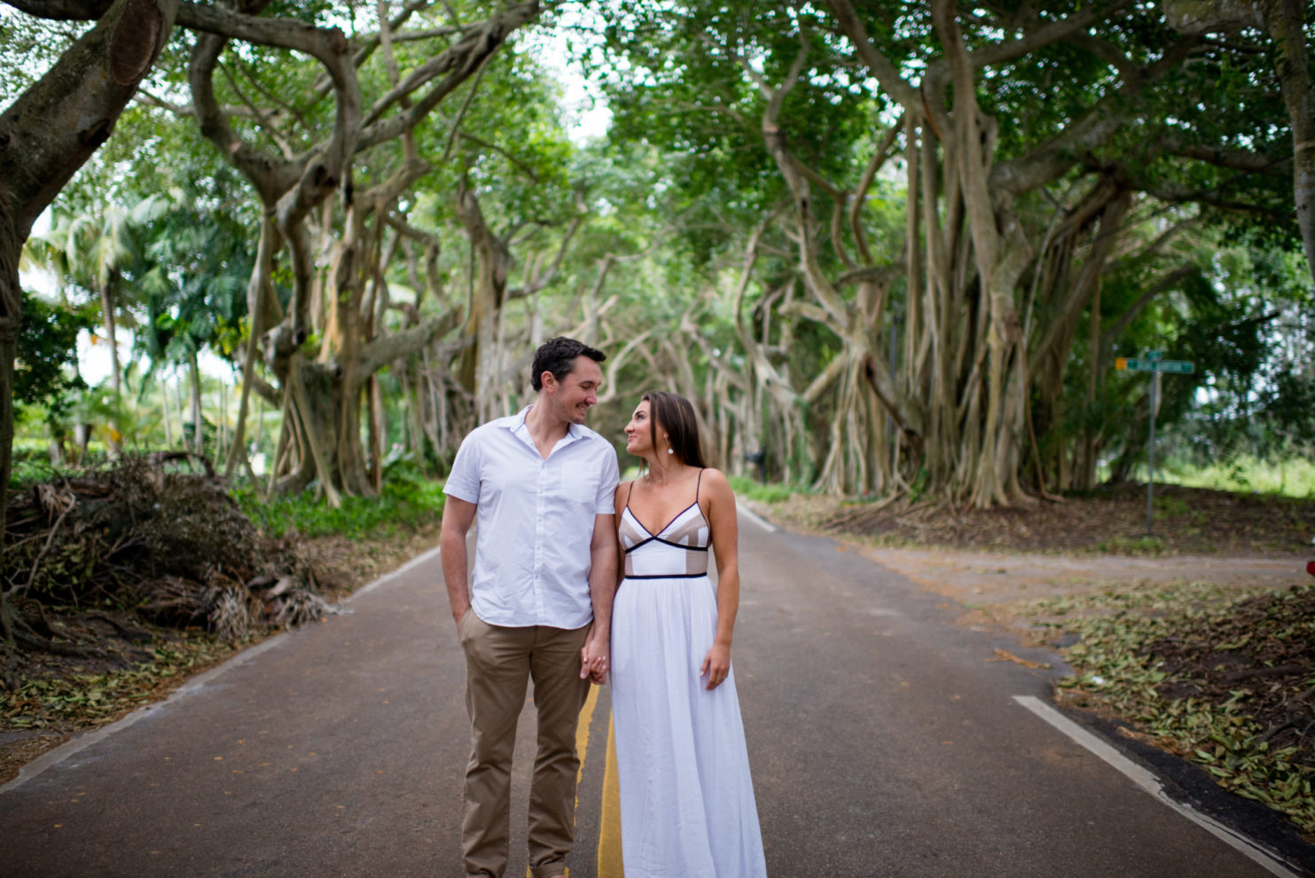 Cleveland Wedding Photography Engagement Photos in the Banyan Trees Photo
