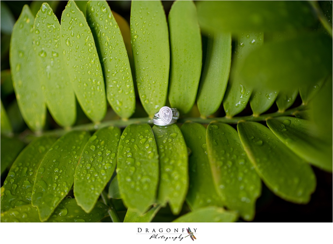 Dragonfly Photography Editorial Wedding Photos West Palm Beach Florida_0001