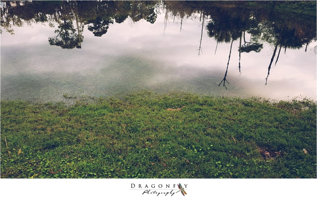 dragonfly-photography-why-a-wedding-photographer-west-palm-beach_0006