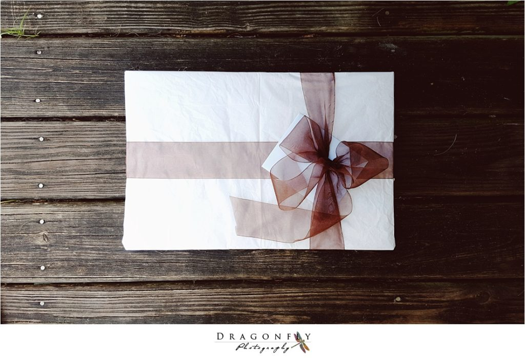 dragonfly-photography-why-a-wedding-photographer-west-palm-beach_0032