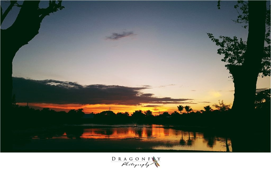 dragonfly-photography-why-a-wedding-photographer-west-palm-beach_0056